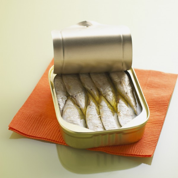 Sardines and Napkin bxp159831h