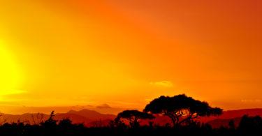 wyjazd do kenii