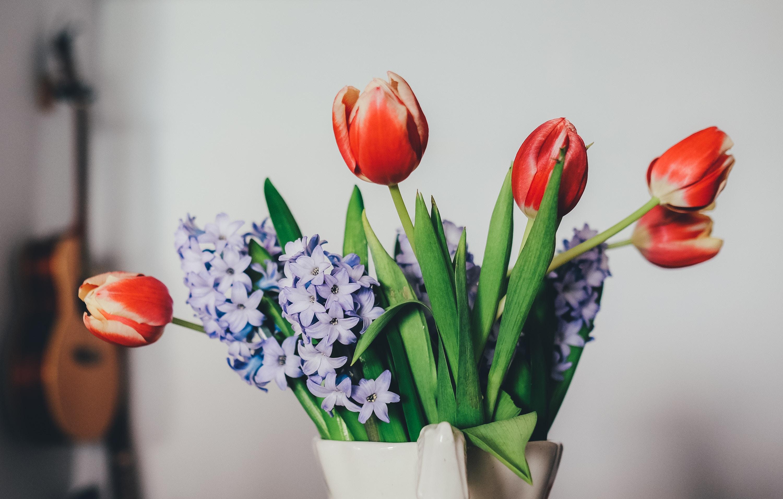 kwiaty-ciete-wazon-wysoki