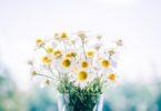 wazon-wysoki-kwiaty-ciete